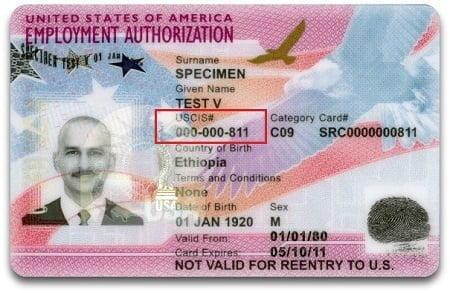 Alien Registration Number on EAD