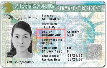 Alien Registration Number on Green Card-2